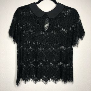 The Limited Black Lace Peter Pan Collar Blouse M